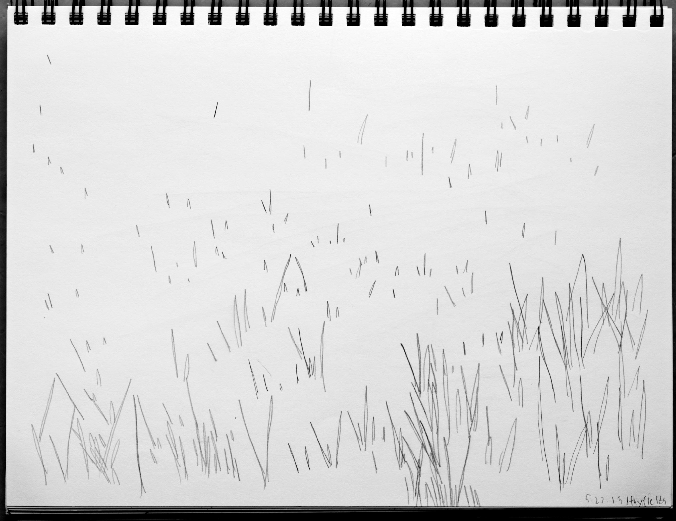 EPB 052313_0971_drawing hayfields Marsh