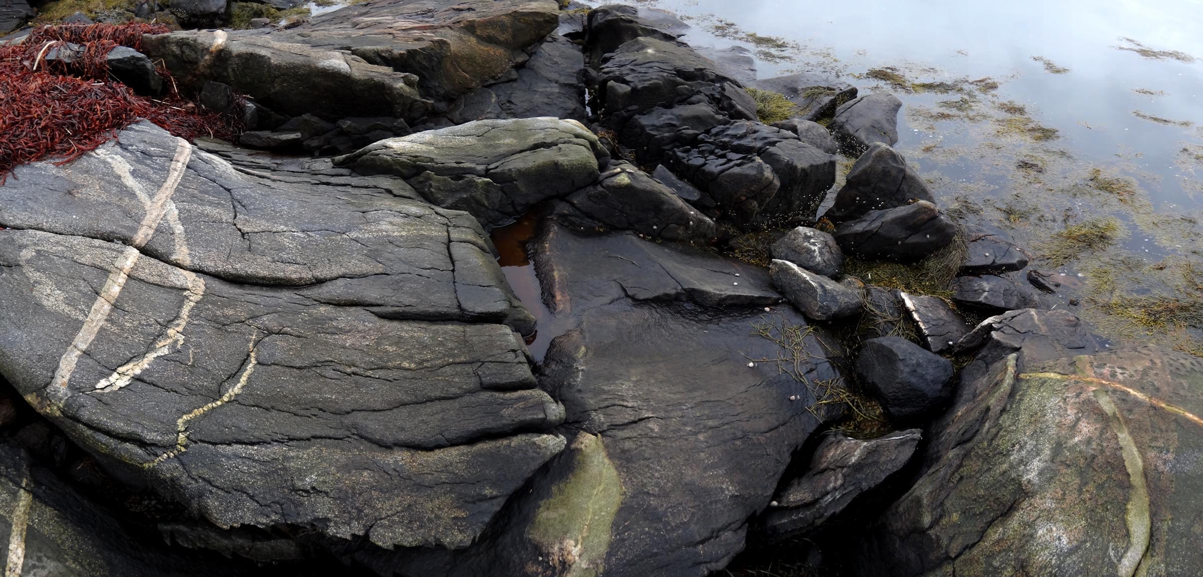 tidal riverfront