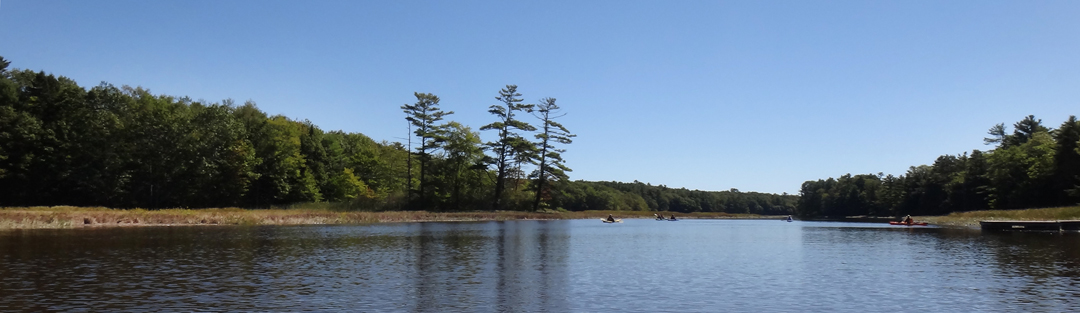 GRLT_091813_TX10_Kayak to Trolley Marsh_pines-kayakers pano crop_DSC06512